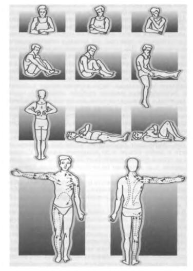 Массаж при опущении кишечника и желудка