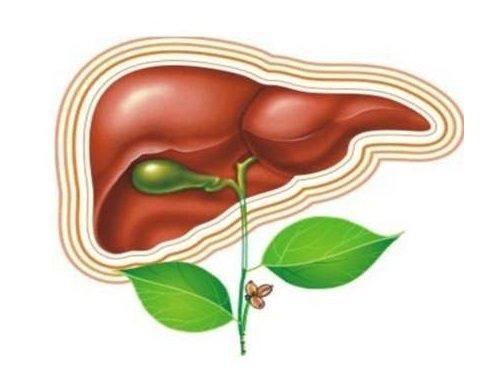 Упражнения для желчного пузыря: лечим холецистит и другие заболевания